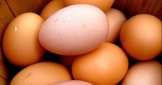 comida-huevos